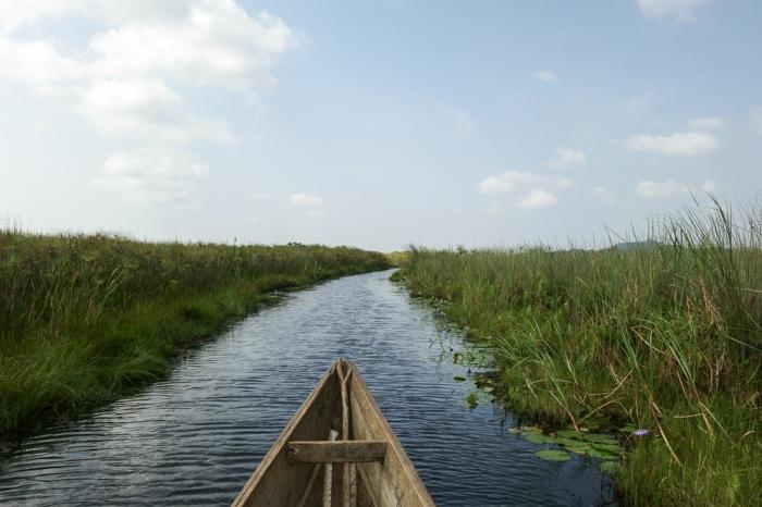 Mabamba swamp